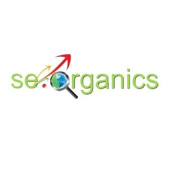 אס אי אורגניקס שיווק באינטרנט